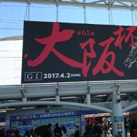阪神競馬場に来ています。
