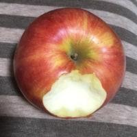 リンゴ食べてるな
