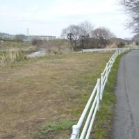 荻野川をサイクリング。