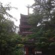 あじさい寺(松戸の本土寺)で、雨に濡れる紫陽花を楽しみました('17.6.25)