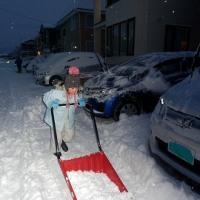 170114 不意打ちのような大雪