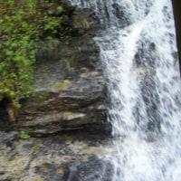 滞在型家庭菜園:滝