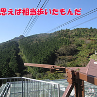 筑波登山を終えて(23日再編集)