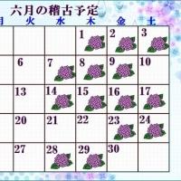 梅雨も又楽し~六月の稽古予定~