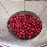ジューンベリー 初収穫 2017