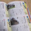 日本の城 城合戦