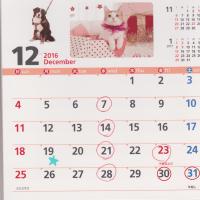 12月及び新年の休診日について