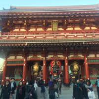 初詣 in 浅草寺