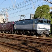 白プレEF65 2094号機牽引75レ(4月23日撮影)
