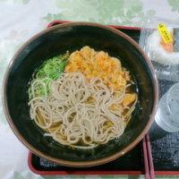 "GW連休の""伊豆半島巡りetc""車中泊(5日~6日目)"