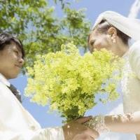 結婚相談(婚活アドバイス) 2273
