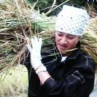 10年目突入!「ひとり農業」中居たちがやってきた~☆自然の中でのびのび♪金スマメンバー