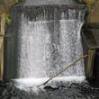 滝ノ川の滝