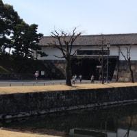 東京駅まで行ったついでに皇居に立ち寄りました。
