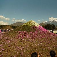 ゴールデンウイーク 富士山周辺。