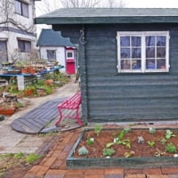 546号 彼岸と此岸。アンの小屋前花壇にハーブの植えつけ。セロリ。