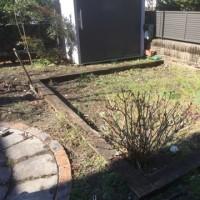 小径のある庭