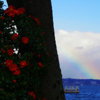 びわ湖の虹