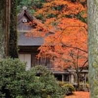 京都大原三千院 3