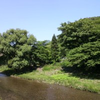 京都・高野川・ランチ。