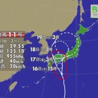 �� JTWC typhon11 right now / ����11�� �ǿ�����