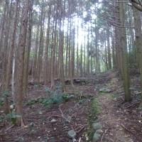 タンタン岩リベンジ