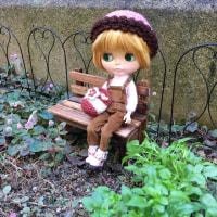 フレンドリーフレックルズ★ブライスのお庭計画