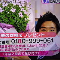 1/16・・・めざましテレビお花プレゼント