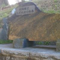 福島県田村市、門鹿蛇盛塚のしだれ桜です!!