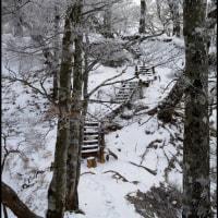 檜洞丸登山