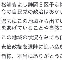 日本共産党大会発言から。