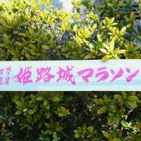 姫路城マラソンの応援に行ってきました