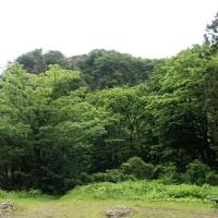 新緑の医王山