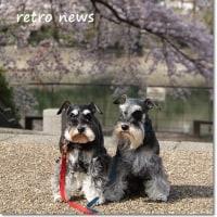 RETRO 記念日 2017