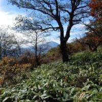 高崎浅間隠山