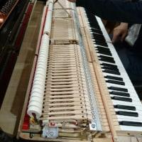 ピアノの勉強会♪