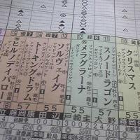 高松宮記念、残高さんは「牝馬 ×」、ワシは「牝馬 ○」