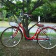 服部緑地までサイクリング