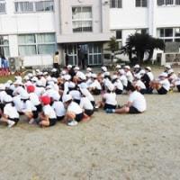 12月9日(金)学級園・学校園がよみがえります!