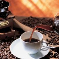 コーヒー豆のかす