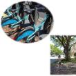 ハワイハイライト-18- 7月7日 レンタルサイクルに乗る・・・