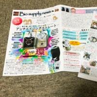 ニュースレター30号&のりさん通心31号