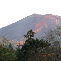 今朝の富士は山中から