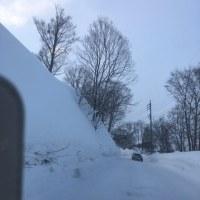 斑尾高原は雪がいっぱい‼️
