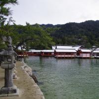 御朱印 : 厳島神社 ( 広島県 廿日市市  )