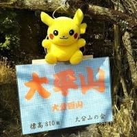 あ~寒い~と思ったら鶴見岳には雪が。。。ここは春近しの九州なんだけれど。。