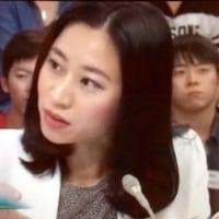 「一人の中国人亡命者でさえ安保法案の必要性が分かるのに、当の日本人になぜ分からないのか?」