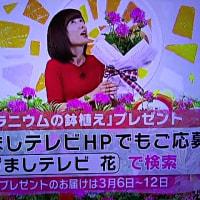 2/27・・・めざましテレビお花プレゼント