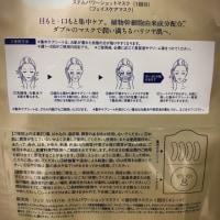 LITS(リッツ)  リバイバル ステムパワーショットマスク