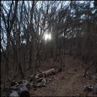 兜山Hike